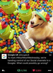 Google use #woofwoofwednesday